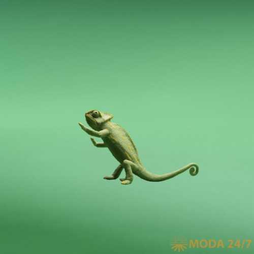varnish chameleon